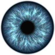 Gunnar Vision
